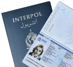 паспорт Интерпола