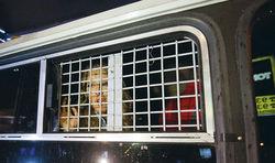 Арест оппозиционеров у Никитских ворот