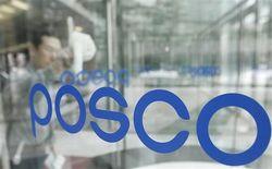 Предполагаемая выручка Posco