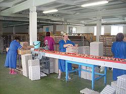 Слонимская птицефабрика