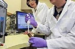 Американские ученые приблизились к выращиванию био-протезов костей