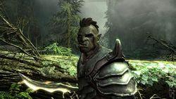 Bethesda изменили порядок релиза дополнений к Skyrim для PlayStation 3