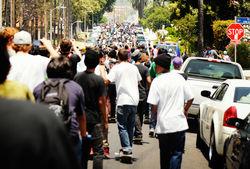 Скейтеры блокировали Голливудский бульвар