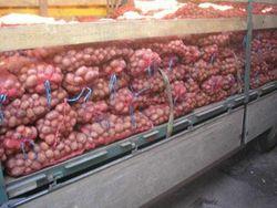 Цены на картофель в Украине