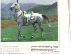 конь Аркадага