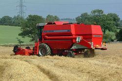 аграрный сектор Украины