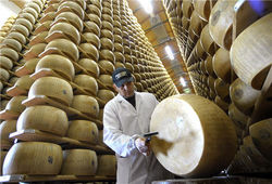 Итальянцы купили 15 тонн пармезана