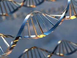 Ученые расшифровали ДНК