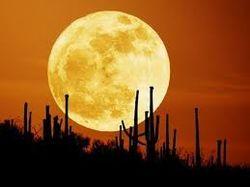 Возникновение Луны