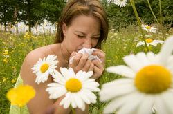 Ученые сумели победить аллергию