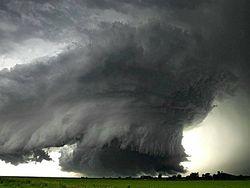 Ураган в Луганске