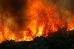 Пожар охватил целое село