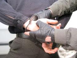 задержание подозреваемых