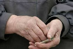 Вырастут пенсии и зарплаты