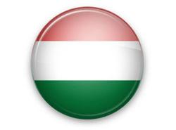Венгерская делегация