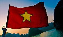 Вьетнам и Таможенный союз