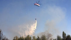лесные пожары в Сибири