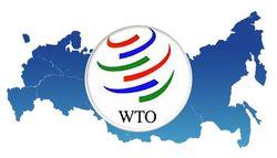 ВТО: обуза или благо для Таможенного союза и российского рубля