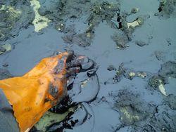 разлив нефти в Иркутской области