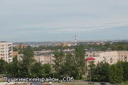 Около полусотни машин попали в ДТП под Петербургом