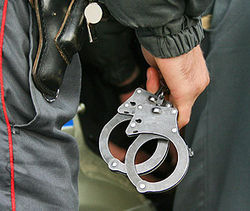 Как задержанному удалось ранить полицейского?