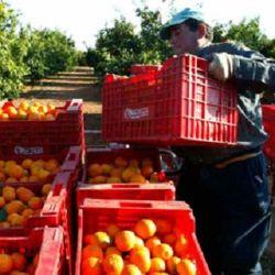 Почему Испания запрещает румынам работать у себя?