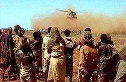 ООН ищет расхитителей гуманитарной помощи для Сомали