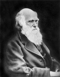 Чем был болен Дарвин?
