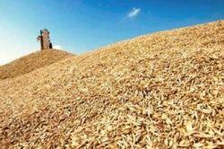 Инвесторам: Украина отменила квоты на экспорт зерновых