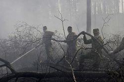 Грозят ли убытками России торфяники Подмосковья жарким летом 2011?