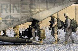 НАТО уничтожило 200 боевиков в Афганистане