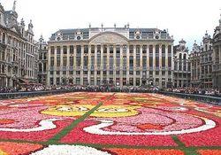 Правительство Бельгии: Еврокомиссия не оставила нам выбора