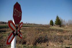 Локомотив протаранил легковушку в Пензенской области