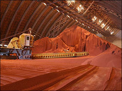 Инвесторам: крупнейший завод по производству калийных удобрений хочет купить Индия
