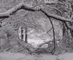 Украинцев предупреждают: пик морозов еще не настал