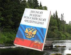 На охрану лесов Россия тратит... в 13.5 раз меньше, чем Баларусь