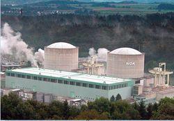 На АЭС в Швейцарии проблемы с основным насосом