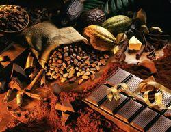 Потребление какао может снизиться