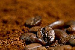 На дне Тихого океана нашли кофеин