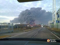 Нидерландский город окутан ядовитым облаком