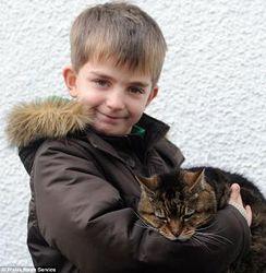 39-летняя кошка вошла в книгу рекордов Гиннеса