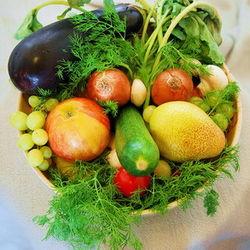 Инвесторам: Беларусь запретила транзит овощей из ЕС
