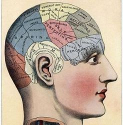 Что человечеству даст управление воспоминаниями?