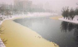 Прокуратура обязала экоинспекцию проверить желтые пятна в Днепре у Киева