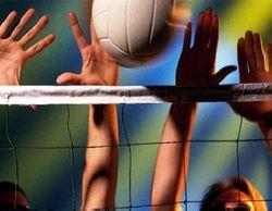 Федерация волейбола подрабатывала, сдавая помещения под... бордель