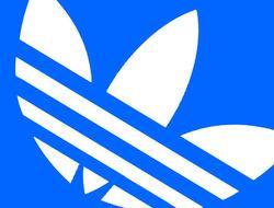 Adidas обнародовала сильные результаты работы во втором квартале