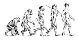 Все по Дарвину: человек продолжает эволюционировать – исследование