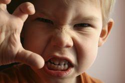 Уровень агрессивности можно определить по анализу слюны