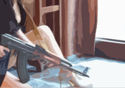 Убитая в Мексике мисс штата первая открыла огонь по военным