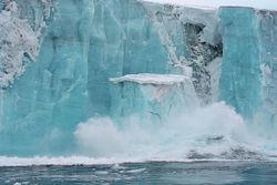Опасения ученых оправдываются. Антарктида тает